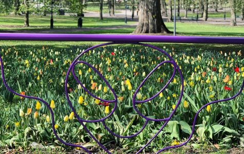 omnipollos flora grind